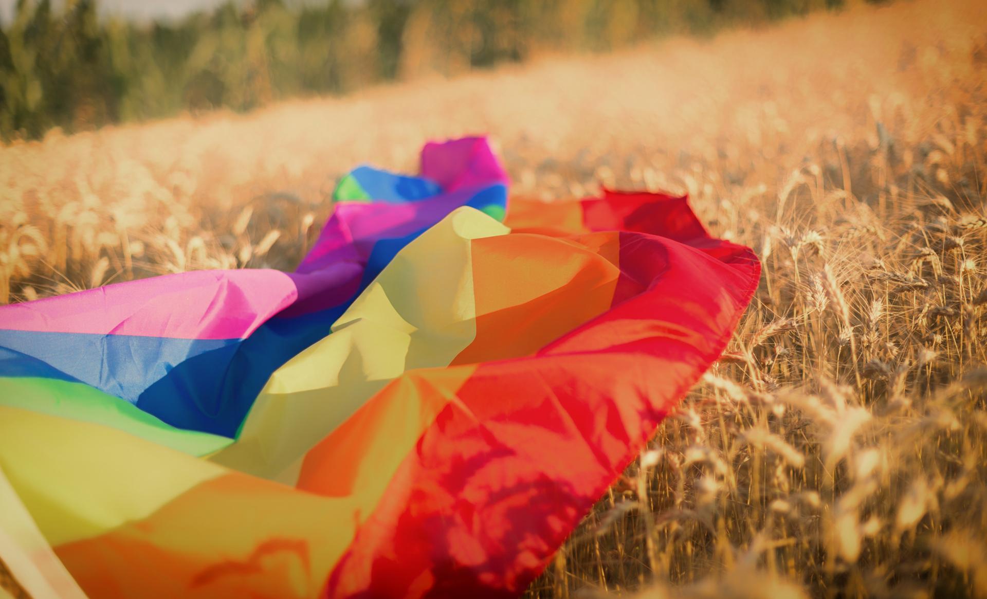 The rainbow flag over a field